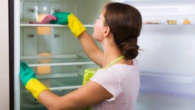 Hướng Dẫn Sử Lý Mùi Hôi Tủ Lạnh Tới 17 Cách Nhanh Nhất